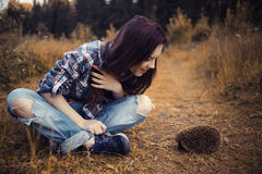Girl playing with a hedgehog Stock Photography