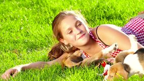 Girl playing with her beagle dog in park. Slow. Girl playing with her beagle dog in park. Girl playing with her beagle dog in summer park. beautiful girl near a stock video footage