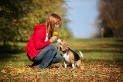 Girl playing with her  dog in autumn park Royalty Free Stock Photography