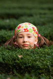 Girl playing hide and seek Stock Photos