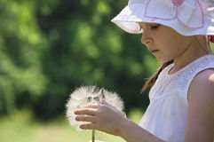 Girl playing with huge blowball of goats-beard Stock Photography