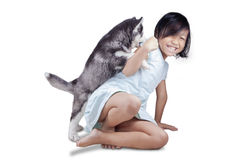 Girl playing with husky puppy in studio Stock Image