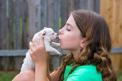 Girl playing kissing puppy chihuahua pet dog Stock Photo