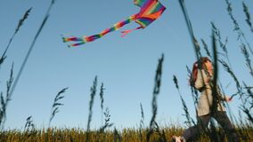 Girl playing with a kite in the field
