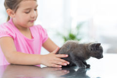 Girl playing with kitten Stock Images