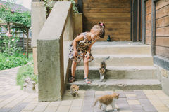 Girl playing with kittens on the terrace Stock Photography