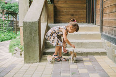 Girl playing with kittens on the terrace Stock Photo