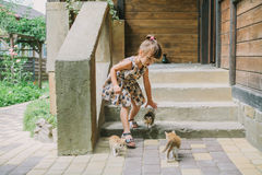 Girl playing with kittens on the terrace Royalty Free Stock Images