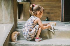 Girl playing with kittens on the terrace Stock Photos