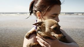 Girl playing with little doggy at seaside. Summertime stock footage