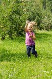 Girl playing in orchard. Young girl playing in an apple orchard Stock Image