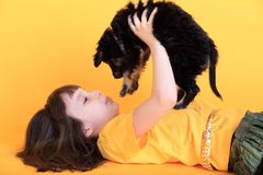 Girl playing with puppy stock images
