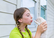 Girl playing with puppy chihuahua pet dog Royalty Free Stock Images