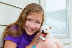 Girl playing with puppy chihuahua pet dog Royalty Free Stock Photo