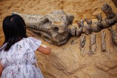 A girl playing in a sandbox with a modeled dinosaur fossil, digging sand off the fossil