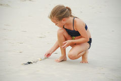 Girl Playing with Sea Shells Stock Image