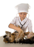 Girl playing veterinarian Royalty Free Stock Photography
