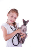 Girl playing a veterinarian with cat shpinx Stock Image