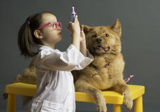 Girl playing veterinarian with dog stock photo