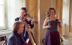 Girl playing violin, string ensemble rehearsal - - viola da gamb Royalty Free Stock Photos
