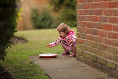 Girl playing with water left for pets Royalty Free Stock Photo