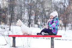 Girl playing with a white dog winter snow Stock Photography