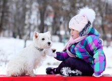 Girl playing with a white dog winter snow Royalty Free Stock Photography