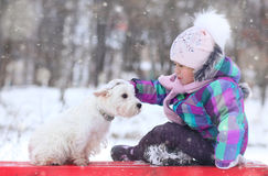 Girl playing with a white dog winter snow Royalty Free Stock Photo