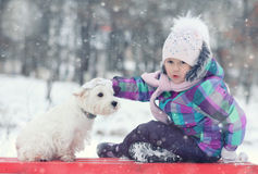 Girl playing with a white dog winter snow Royalty Free Stock Photos