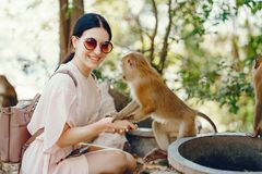 Free Girl Playing With Monkey Royalty Free Stock Photos - 118399398