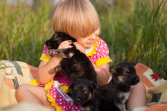 Girl Playing With Puppies Royalty Free Stock Photos