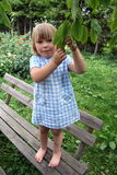 Girl playing on wooden bench. Cute preschool girl playing on wooden bench in leafy green park or garden Royalty Free Stock Photo