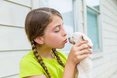Girl playingkissing puppy chihuahua pet dog Royalty Free Stock Photography