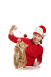 The girl plays with  cat Stock Photography