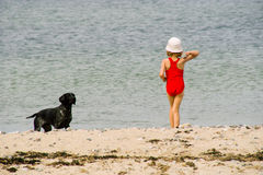The girl plays with a dog. The little girl plays with a dog on a beach Stock Photography