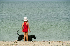 The girl plays with a dog Stock Image