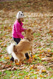 Girl plays with a dog in the park Royalty Free Stock Photos