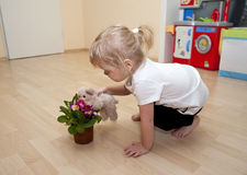 Girl plays with flower and toy dog Royalty Free Stock Photo