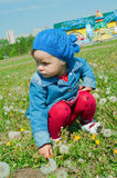 Girl plays with flowers Stock Photo