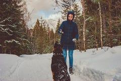 The girl plays with a German shepherd stock photos