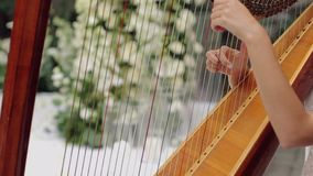 Girl amazingly plays the harp. The girl plays the harp amazingly during the banquet stock footage