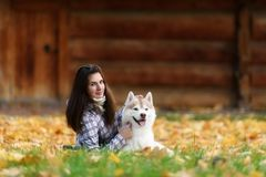 Girl plays with her dog in fallen autumn leaves. Girl plays with her husky dog in fallen autumn leaves royalty free stock image