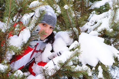 Girl plays hide-and-seek. Girl plays hide-and-seek in wintery forest Royalty Free Stock Photo