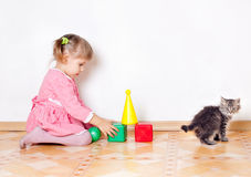 The girl plays with a kitten Stock Images