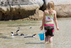 Girl plays with little penguins on beach. Shot in the Boulders Beach Nature Reserve, near Cape Town, Western Cape, South Africa Stock Photo