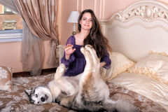 Girl plays with malamute Royalty Free Stock Image