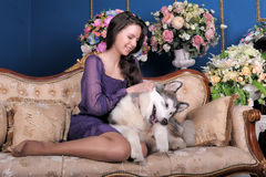 Girl plays with malamute. Teen girl plays at home with malamute Stock Photo