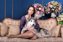 Girl plays with malamute. Teen girl plays at home with malamute Stock Photography