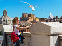 Girl plays with seagulls in Rome Stock Images