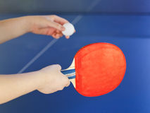 Girl plays in table tennis with red racket Royalty Free Stock Photography